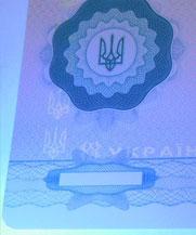 Диплом - свечение УФ (Чернигов)