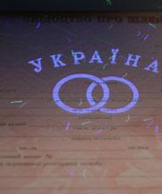 Диплом - микро ворс в УФ (Чернигов)